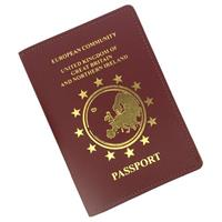 European Leather Passport Holder
