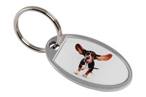 Zing Oval Key ring