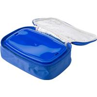 Cooler bag with a plastic lunch box.